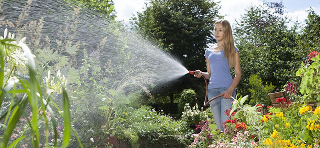 Vanning av uteplanter og blomster om sommeren