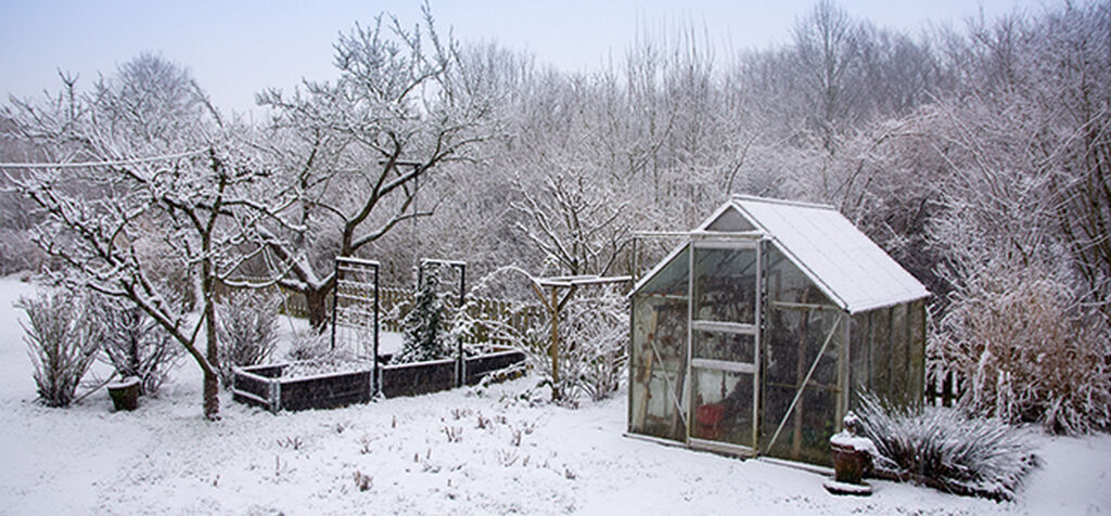 Så direkte om vinteren – og høst inn i vår