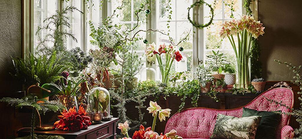 Adventspynt med planter