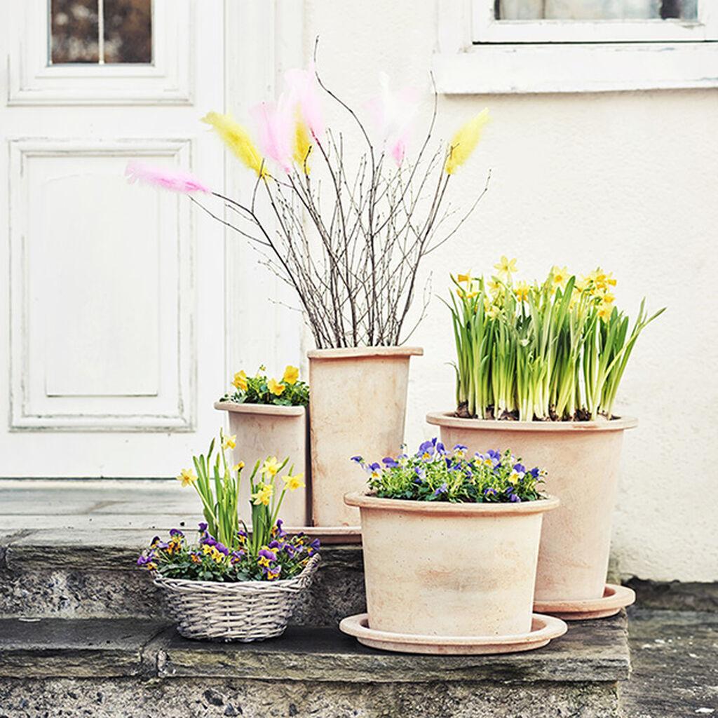 April – lyset, duften, sol og vårregn