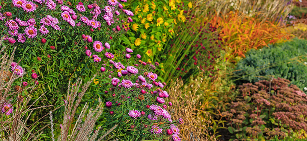 Forleng sommeren i hagen