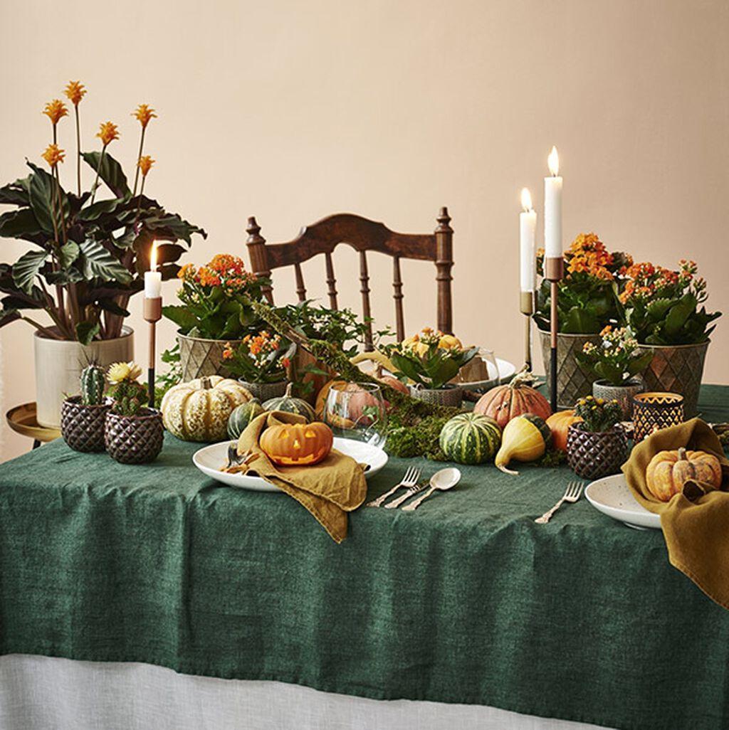 Bukke til halloweenfest med blomster og gresskar