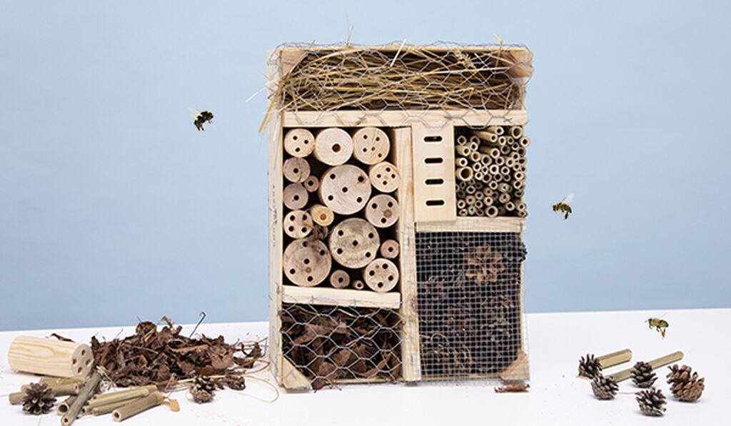 Bygg ditt eget insekthotell – i sju enkle trinn