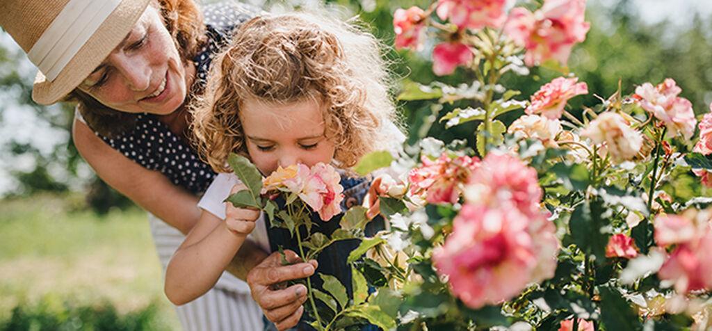 Blomsterbed – slik lykkes du