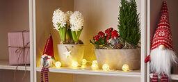 Lag din egen julegruppe med blomster