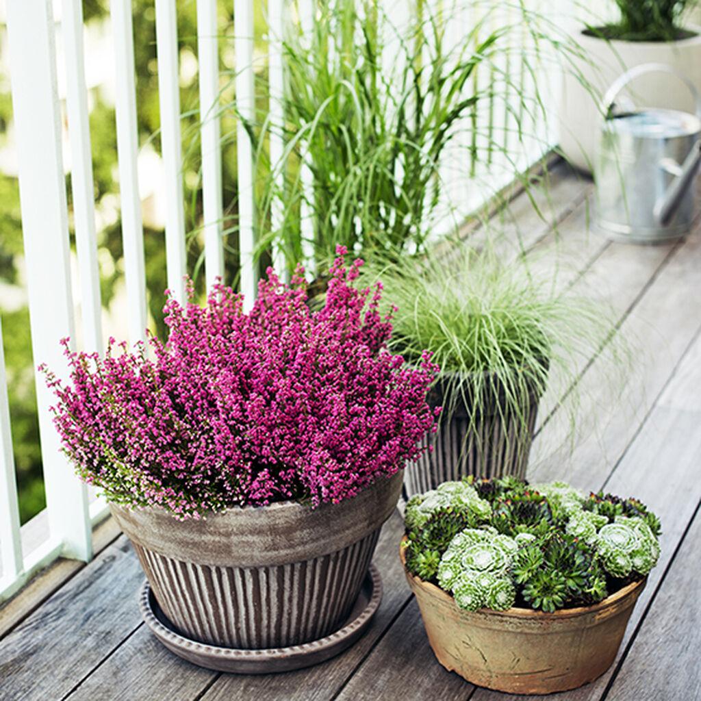 Gjør det høstfint på balkongen, terrassen og ved inngangen