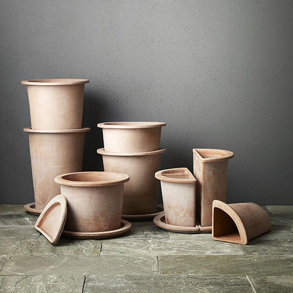 Plant og dyrk i Olea-potter