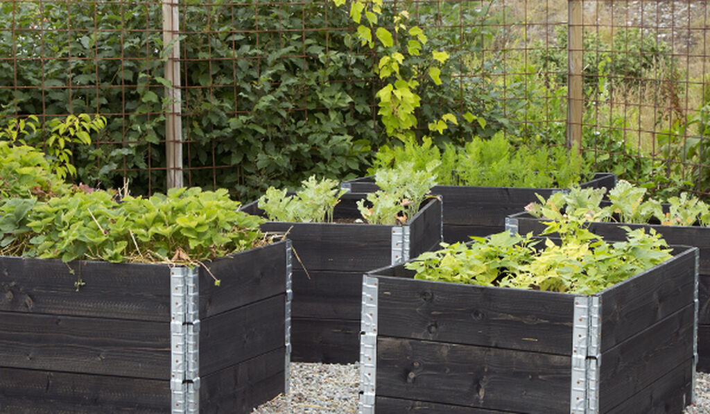 Slik setter du sammen din egen plantekasse