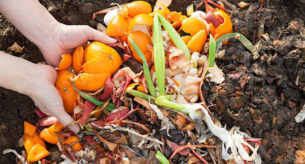 Kompost – slik lykkes du