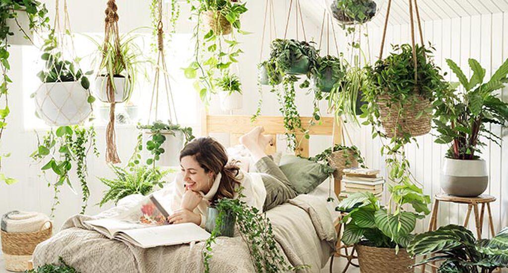 Innred med grønne planter