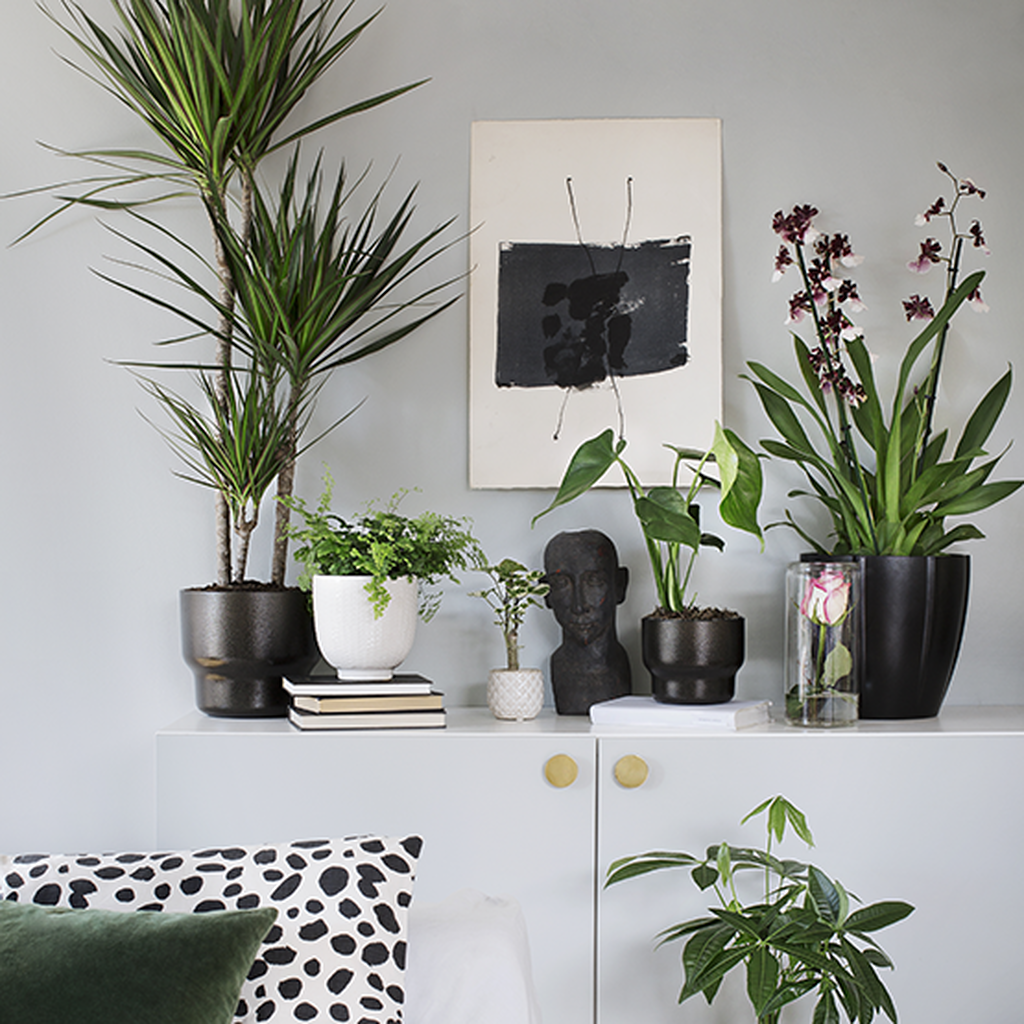 Contemporary Classic – en tidløs og moderne stil