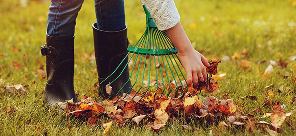 Syv måter å forberede hagen for vinteren på