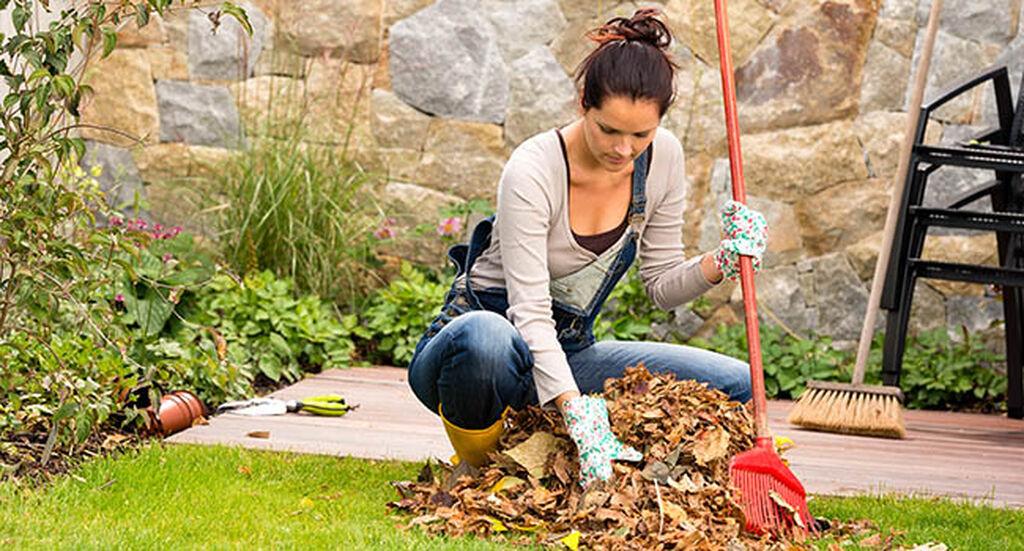 Våropprydding i hagen