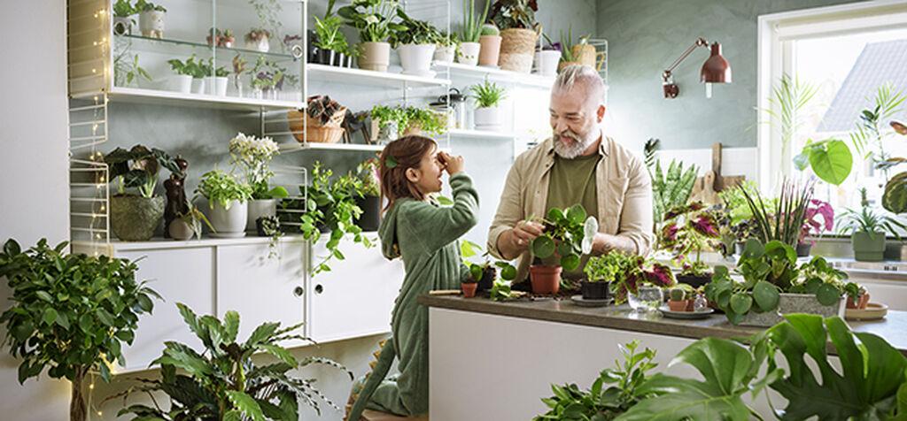 Planter gir oss styrke og energi