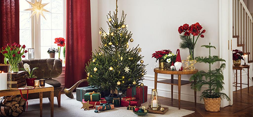 Desember – julestemning både inne og ute