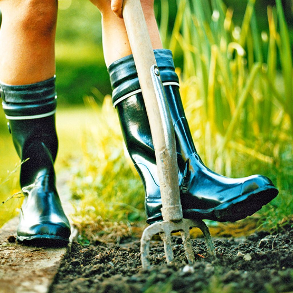 Basisredskaper til hagearbeid