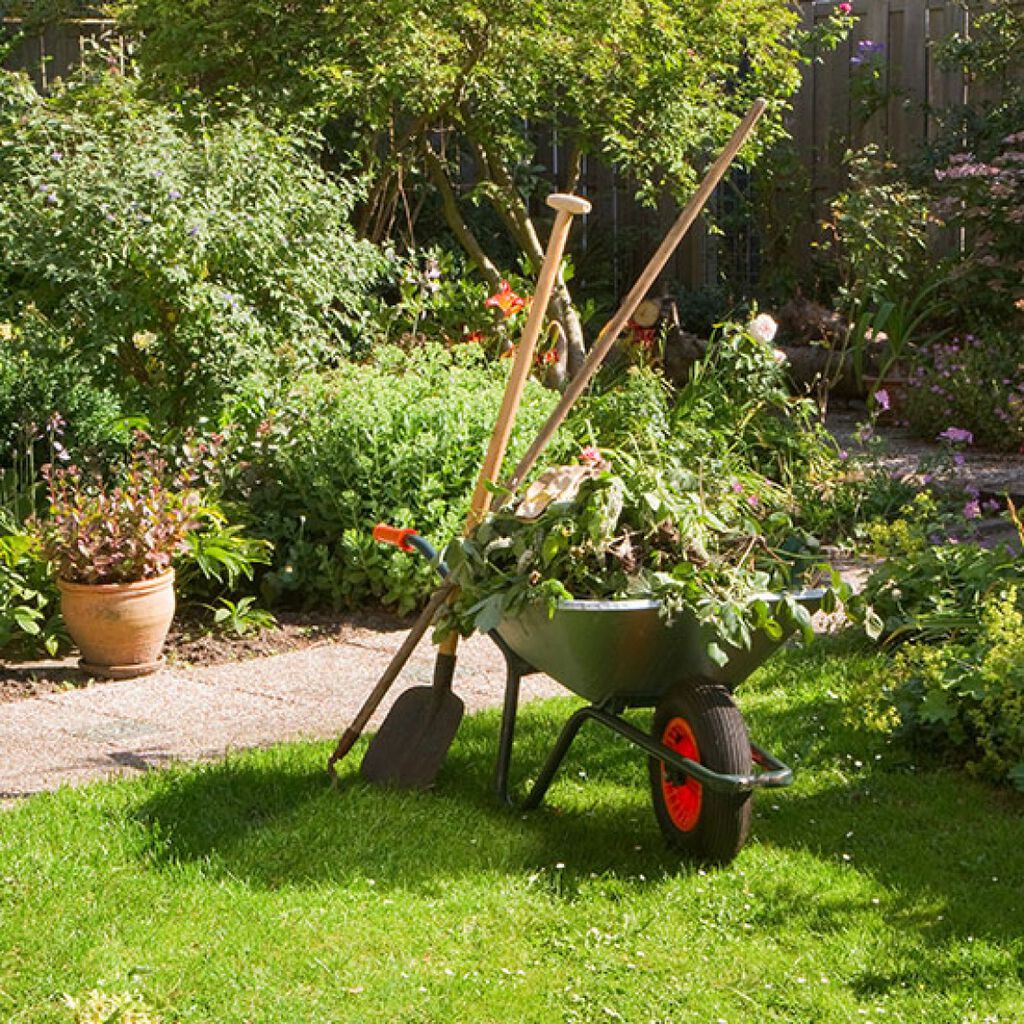 Juni – la deg fortrylle av hagen