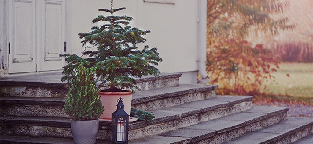 November – ta deg tid til litt fred og ro
