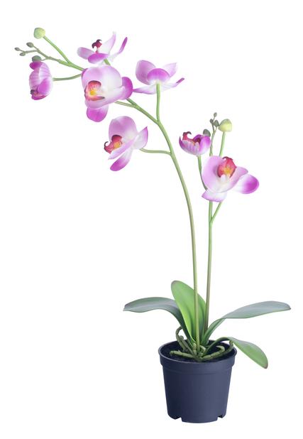 Orkidé i potte H53 cm, rosa, kunstig