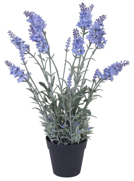 Lavendel kunstig, Høyde 40 cm, Rød