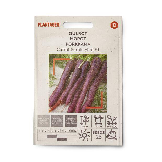 Gulrot 'Carrot Purple Elite F1'