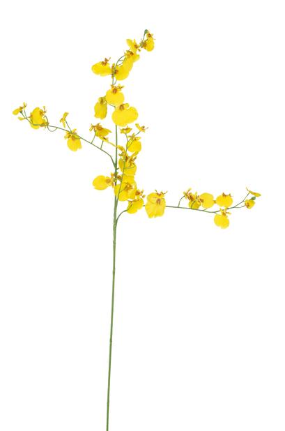 Orkidékvist Oncidium kunstig, Høyde 92 cm, Gul