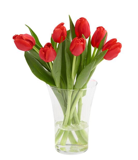 Tulipaner 7-pk
