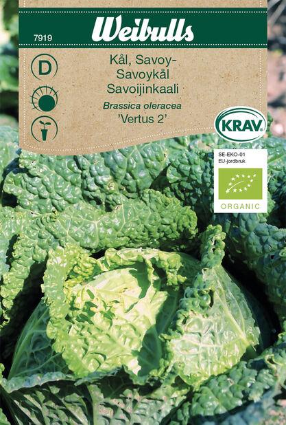 Savoykål 'Vertus 2' KRAV