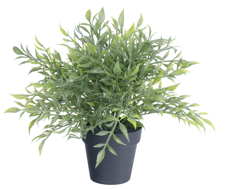 Grønn plante kunstig , Høyde 25 cm, Grønn