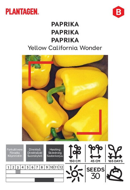 Paprika 'Yellow California Wonder'
