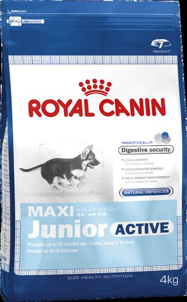 Maxi Junior Active 15kg