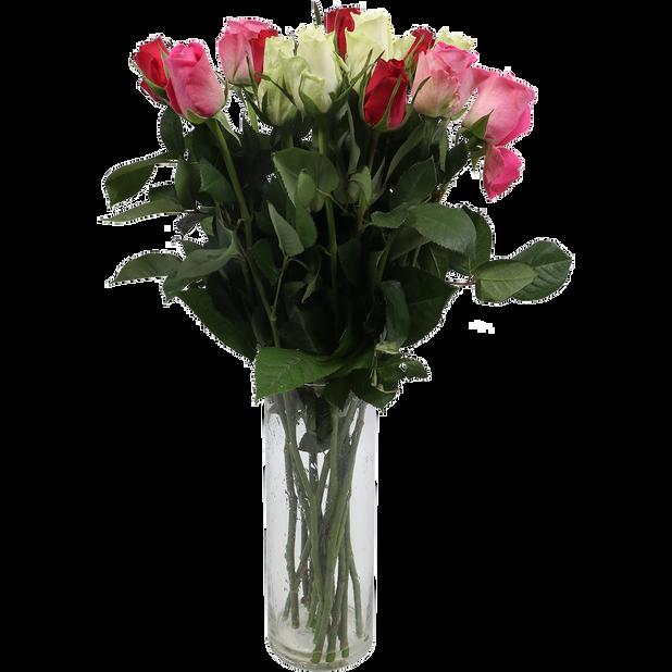 Roser , Høyde 50 cm, Flerfarget