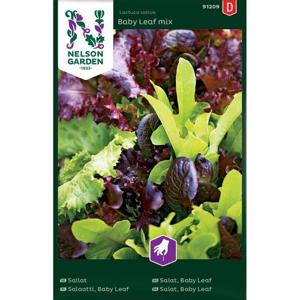 Salat, Baby Leaf mix, Flerfarget