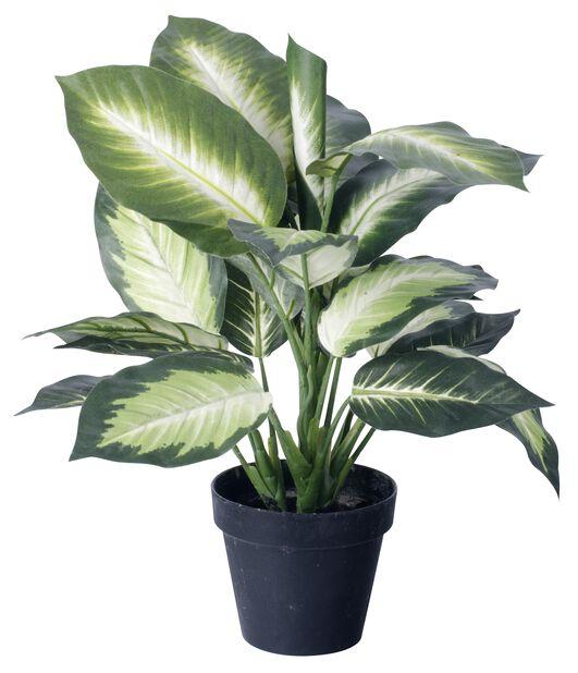 Diffenbachia kunstig, Høyde 55 cm, Grønn
