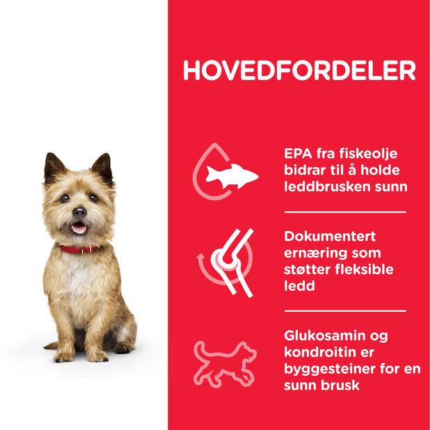 Hill´s SP Healthy Mobility Small & Mini Adult Hundefôr med kylling, 6 kg, Hvit