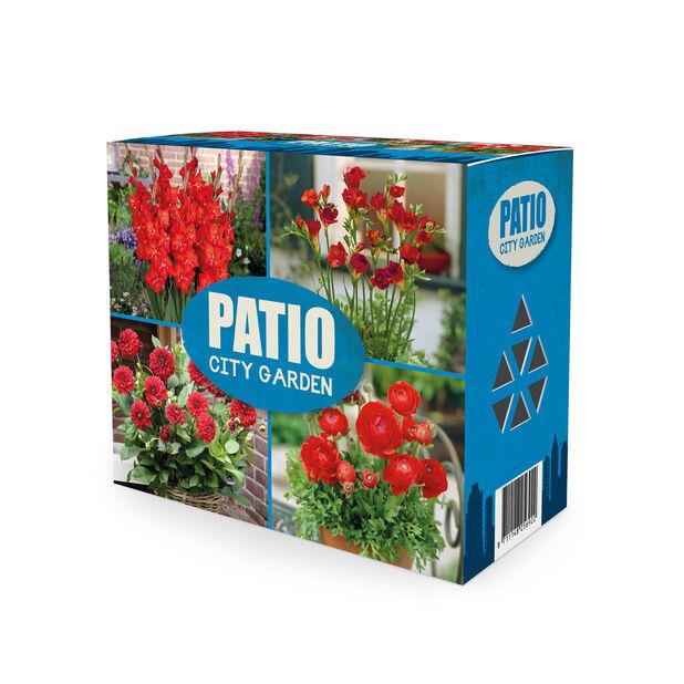 Blomsterløk miks 'Patio City Garden', Rød
