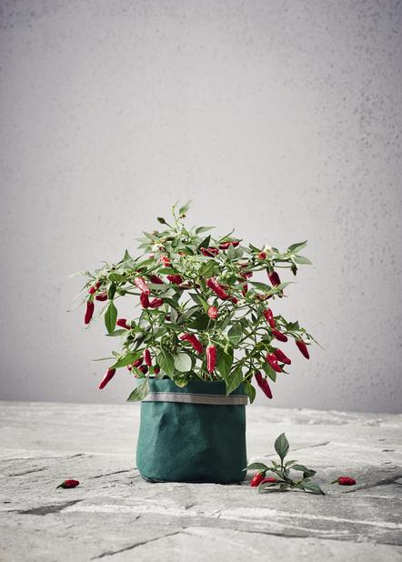 Plantebag Herba liten