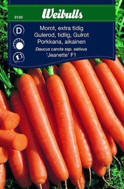Gulrot 'Jeanette' F1