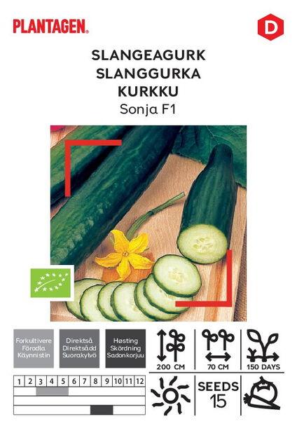 Slangeagurk 'Sonja F1'