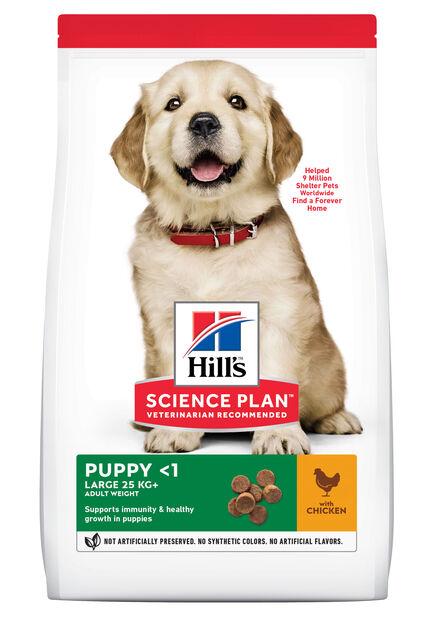 Hill's Large breed Puppy, 12 kg, Hvit