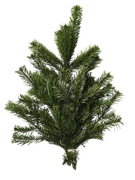 Granbukett edelgran, Høyde 40 cm, Grønn