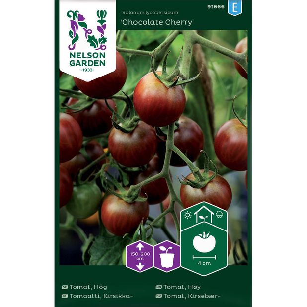 Cherrytomat 'Chocolate Cherry', Flerfarget