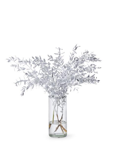 Eucalyptus farget 3 pk