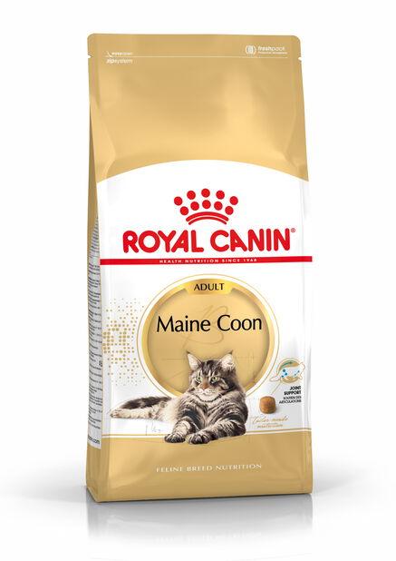 Maine Coon 10kg, 10 kg