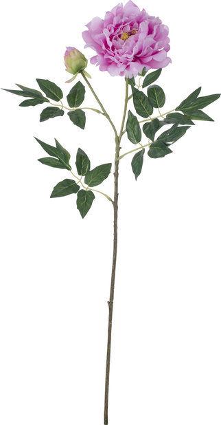 Peon kunstig, Høyde 61 cm, Hvit