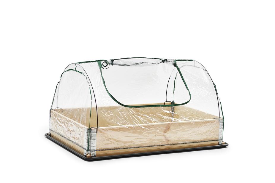 Drivhus for plantekasse, Transparent