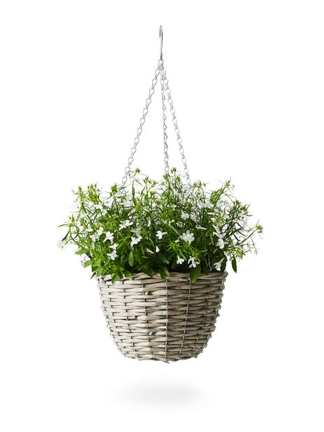 Hengeampel Willow , Ø25 cm, Grå