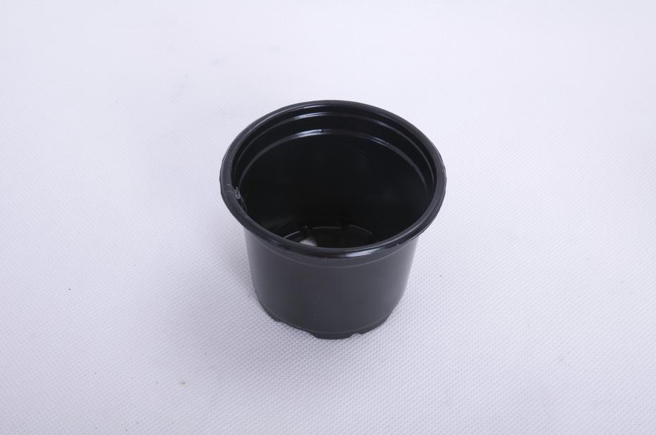 Plastpotte rund Ø8cm 10 pk