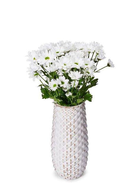 Chrysantemum 3 pk, Høyde 38 cm, Flere farger