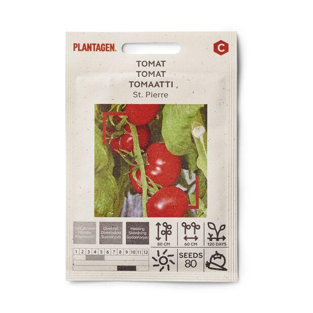 Tomat 'St. Pierre'